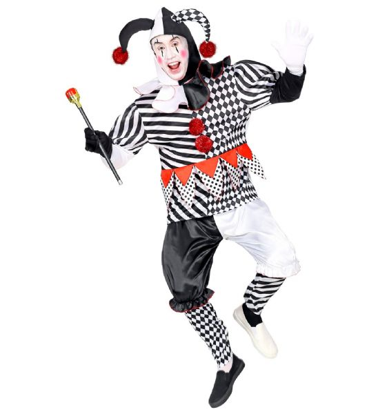 Adults Mens Harlequin Masquerade Fancy Dress Costume